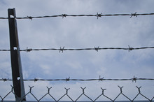 The Pattern And Texture Of The Barb Wire Fence In The Blue Cloudy Sky.