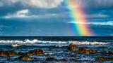 Fototapeta Tęcza - Hawaiian Rainbow
