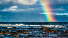 Hawaiian Rainbow