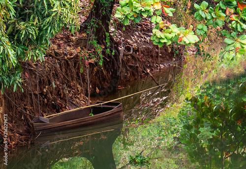 Photographie  Canoa parada de baixo de árvore na margem do rio