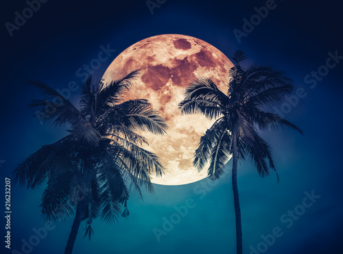 Landscape of sky with blood moon behind coconut palm. Serenity background.