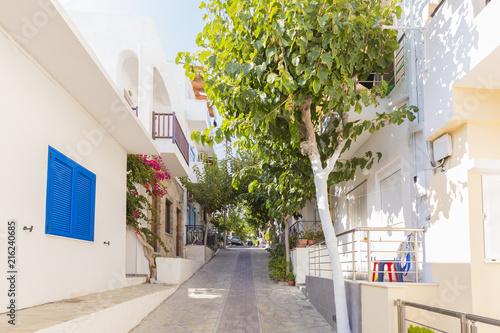 ulica-w-myrtos-z-pieknymi-drzewami-kreta-grecja