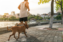 Work Out With Dog. Asian Male Running With His Dog In The Park
