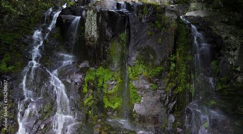 Poster Watervallen 숲속의 작은 폭포