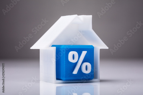 Blue Cube With Percentage Sign Inside House Model Canvas Print