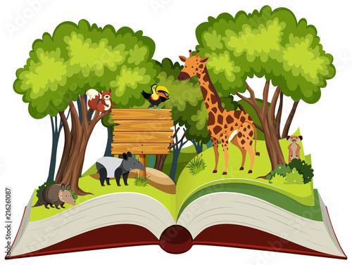 otwarta-ksiega-dzikich-zwierzat