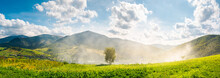 Panorama Of Beautiful Mountainous Countryside. Tree On The Hill Side In Smoke From Fire In The Valley. Wonderful Bright Autumn Landscape With Gorgeous Cloudscape