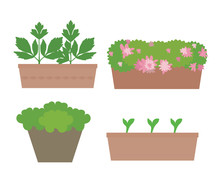 Set Of Flat Design Boxes And Pots With Colorful Flowers And Vegetables, Isolated On White Background