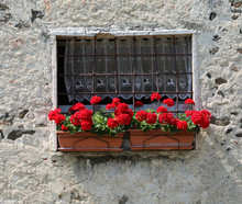 Two Plastic Pots Of Red Geraniums On The Balcony Of A Stone Hous