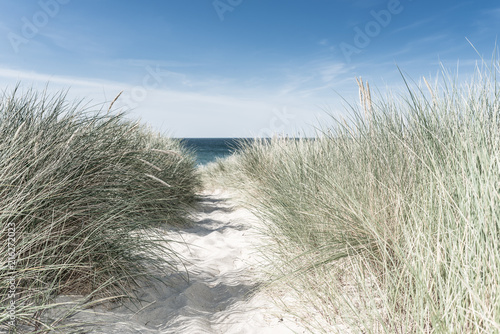 Fototapeta Wydmy   dune-with-green-grass-view-for-the-beach