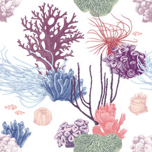 Seamless Pattern With Hand Drawn Coral Reef