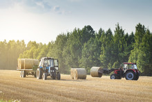 Agricultural Machinery On A Chamfered Golden Field Moves Bales Of Hay After Harvesting Grain Crops. Tractor Loads Bales Of Hay On Trailer. Harvest Concept.