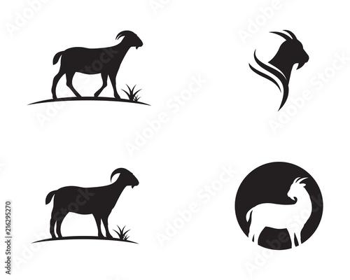 Goat Logo Template vector icon Fototapeta