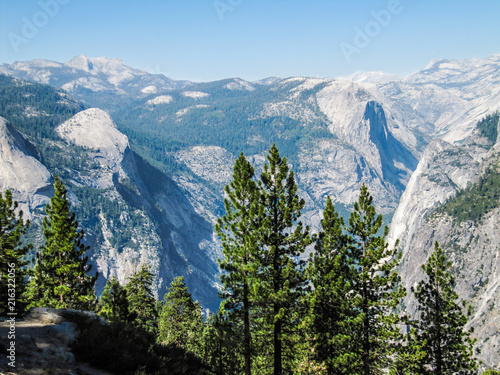 Aerial view of landscape during summer in Yosemite National Park with many pine Poster