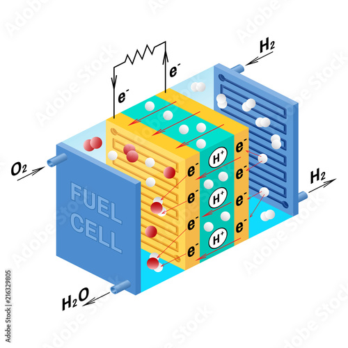 Fuel Cell Diagram Vector Illustration Buy This Stock Vector And