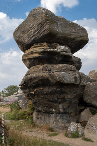 Fotobehang Grijze traf. Scenic view of Brimham Rocks in Yorkshire Dales National Park