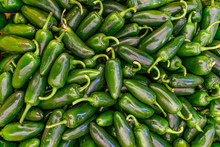 Pile Of Jalapeno Peppers For S...