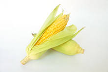 Corn On The Cob, Husk Organic ...