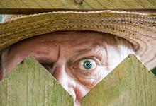 Ein Neugieriger Nachbar Sieht ...