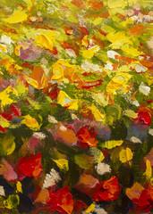 FototapetaOil painting of a red ogange flower poppy field. Summer flowers red field. Modern art - impressionism, texture.