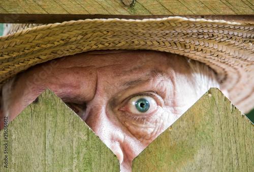 Fotomural ein neugieriger Nachbar sieht über den Gartenzaun