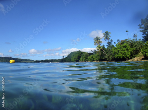 Deurstickers Schipbreuk Sealife of Luganville, Espiritu Santo, Vanuatu