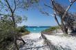 canvas print picture Saleccia beach in Corsica island