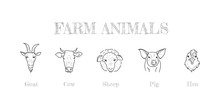 Farm Animals Hand Drawing