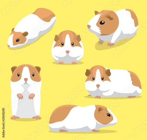 Fotografía  Cute Guinea Pig Poses Cartoon Vector Illustration