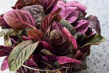 Leaves Of Red Spinach Amaranth...