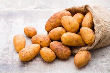 Fototapeta A bio russet potato wooden vintage background.