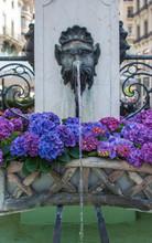 Swiss Fountains