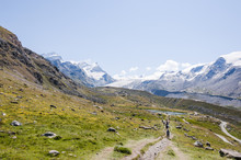 Zermatt, Stellisee, Wanderweg, Blauherd, Adlerhorn, Strahlhorn, Fluhalp, Pfulwepass, Findelgletscher, Wallis, Alpen, Walliser Berge, Sommer, Schweiz