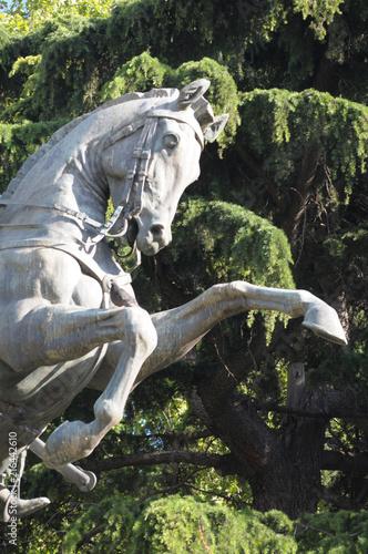 In de dag Historisch mon. statue