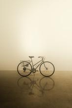 Vintage Ladies Bicycle - Portrait 1