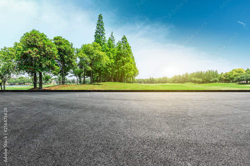 Fototapeta Empty asphalt road and green forest landscape
