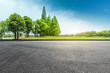 canvas print picture - Empty asphalt road and green forest landscape