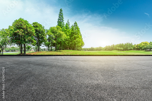 Empty asphalt road and green forest landscape