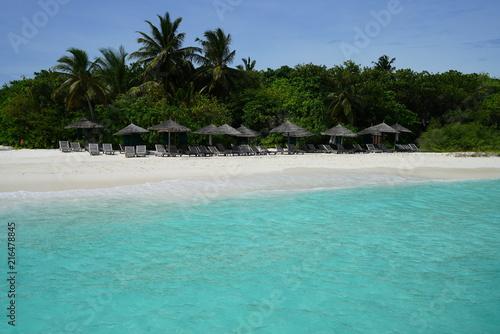 Canvas Prints Green coral View along the coast of an island in Baa Atoll, Maldives