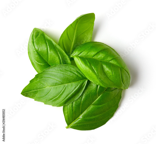 Basil leaves isolated on white, from above