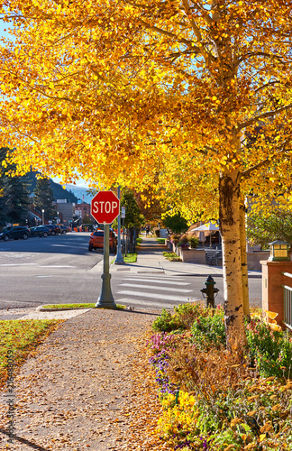 obraz lub plakat Street in Aspen town at autumn
