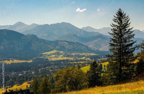 beautiful landscape of zakopane valley. popular tourist destination in hight tatra mountains. summer vacation in poland