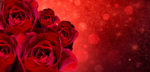 Banner Red Rose Bokeh Red Back...