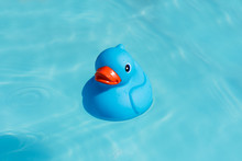 A Single Blue Rubber Duck Floa...