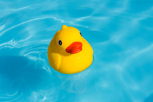 A Single Yellow Rubber Duck Fl...