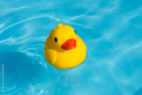 Valokuva  A single yellow rubber duck floats in a paddling pool
