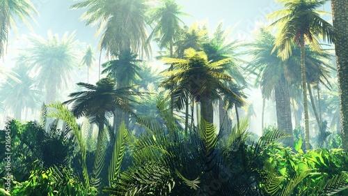 Obraz premium Tropikalna dżungla we mgle. Palmy rano.