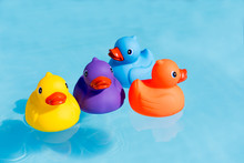 Four Colourful Rubber Ducks, A Family Of Ducks, Yellow, Blue, Purple And Orange, Swimming In The Water In A Paddling Pool