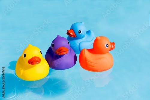 Obraz na płótnie Four colourful rubber ducks, a family of ducks, yellow, blue, purple and orange,