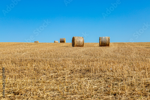 Foto op Aluminium Blauw Haybales in a field in Sussex, on a sunny summer's day